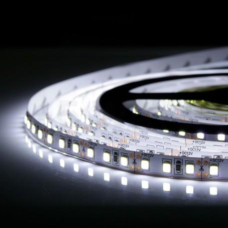 Світлодіодна стрічка B-LED 2835-120 W IP20 біла, негерметична, 1м - в Україні