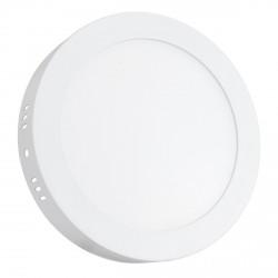Светильник светодиодный Biom W-R13 W 12Вт накладной круглый белый