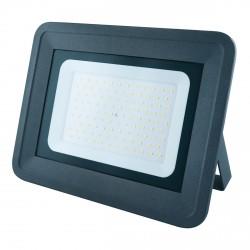 Светодиодный прожектор BIOM 100W S4-SMD-100-Slim 6500К 220V IP65
