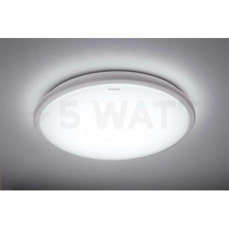 Світильник світлодіодний PHILIPS 31814 LED 12W 6500K Grey накладний круглий (915004487101) - недорого