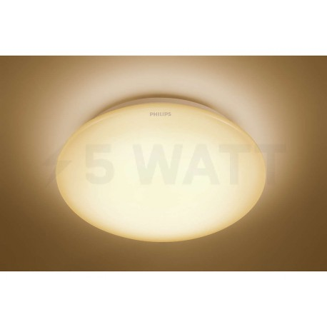 Светильник светодиодный PHILIPS 33362 LED 16W 2700K White накладной круглый (915004478301) - недорого