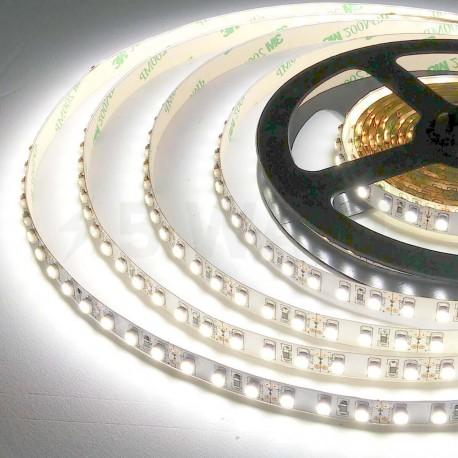 Світлодіодна стрічка B-LED 24V 3528-120 W IP65 біла, герметична, 1м - в Україні