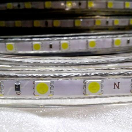 Светодиодная лента NED 5050-60 W 220В холодный белый IP68, герметичная, 1м - недорого
