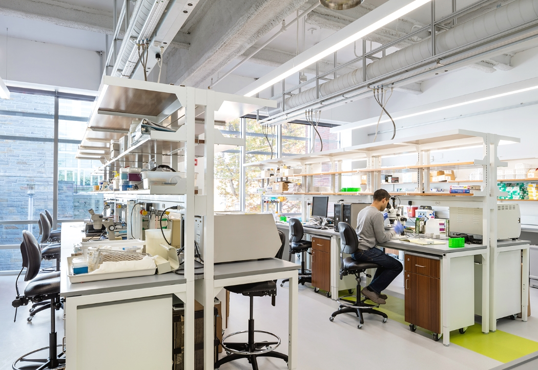 Освещение в лаборатории